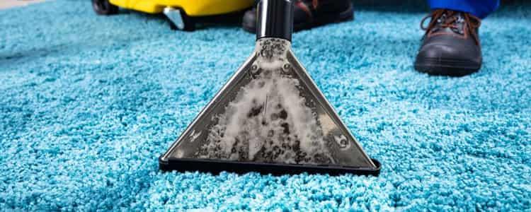 Expert Rug Cleaning Kambah